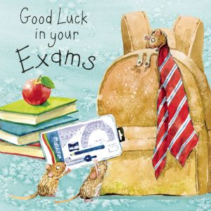 FIZ70  Good Luck In Your Exams Card